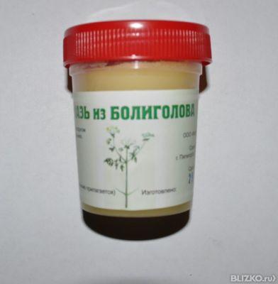 Применение масло болиголова при фиброзно кистозной мастопатии